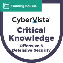 Critical Knowledge Offensive and Defensive Security