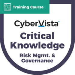 Critical Knowledge Risk Management