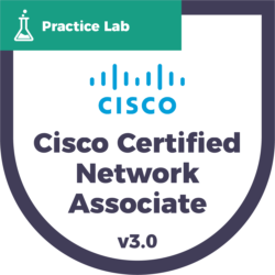 Cisco Certified Network Associate (CCNA) Practice Labs